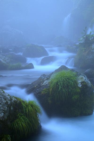 霧の中の流れ